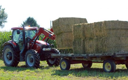 tractor loading hay bales by corn field