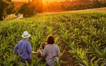 a family looking out at their farm field