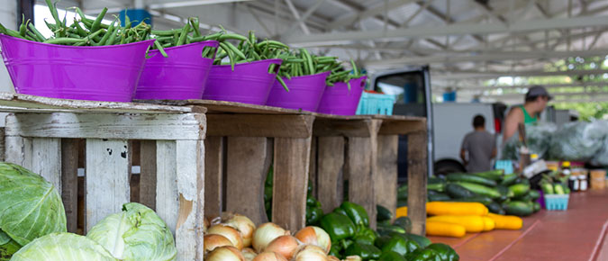 Farm Diversification through Direct Marketing