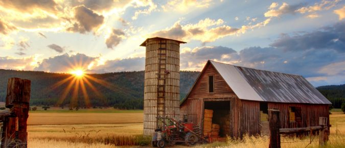 Assess your Farm Business using a SWOT Analysis