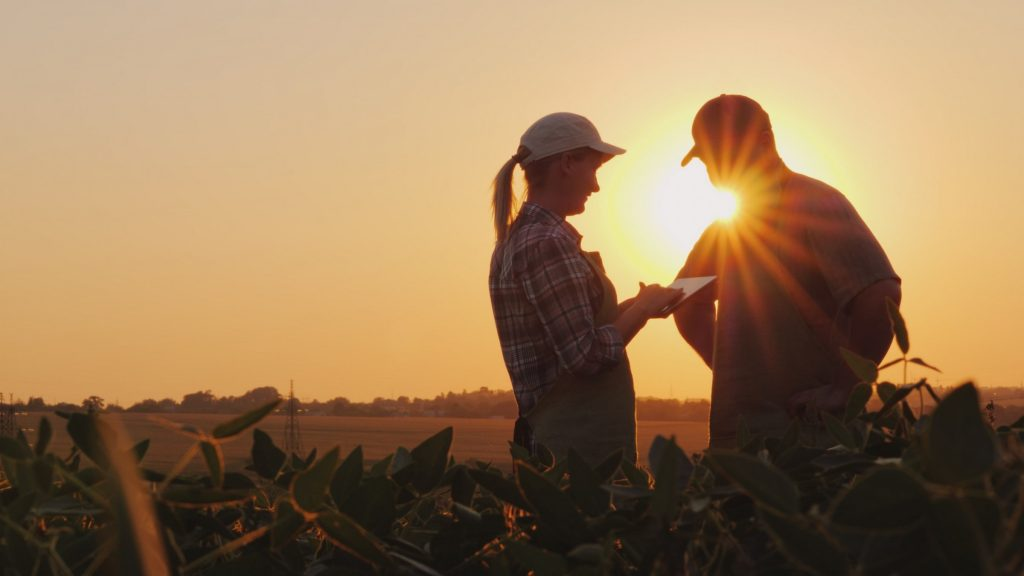 a man and a woman communicating on the farm