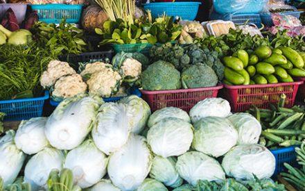 fresh vegetables varieties displayed in containers