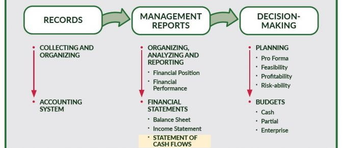 Understanding the Statement of Cash Flows