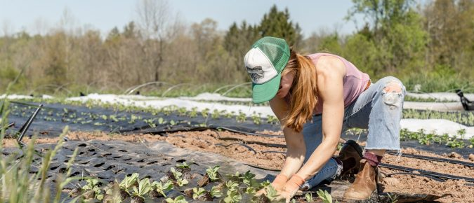 Developing your farm business idea